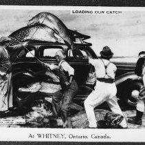 Image of 5716 - Postcard from Whitney.
