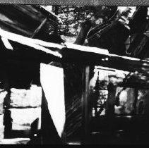 Image of 5748 - The old ranger cabin at Graham Creek, June 1980.