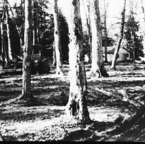 Image of 5898 - Construction of Tea Lake Campground