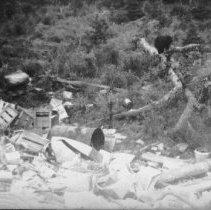Image of 5930 - Bears in Blackfox dump
