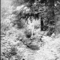 Image of 5940 - Deer Lake Trail (Hardwood Hill)