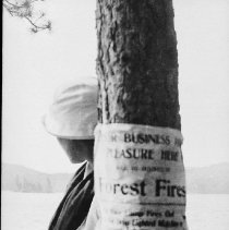 Image of 5997 - Forest Fire sign