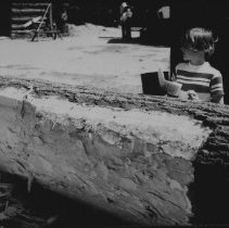 Image of 6265 - Square log
