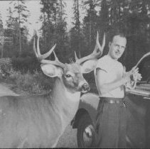 Image of 6297 - Unknown man with deer along highway, Algonquin Park