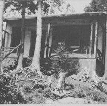 "Image of ""Hemlock Hollow"""