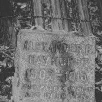 Image of November, 1994 - Grave marker