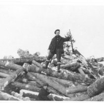 Image of Log Jam.