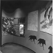 Image of 1970 - Algonquin Park Museum