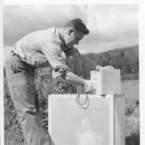 Image of 3915 - Roy Anderson putting Black Flies Into Cage With Duck