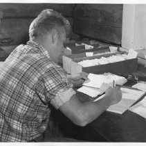 Image of 4539 - Checking creel cards, Opeongo fish lab.