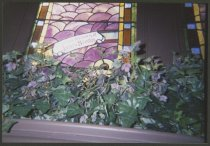 Image of Window at St. John's Church in New Albany, Ind. - Stained glass
