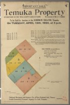 Image of Important sale : Temuka property (part of the well-known Carlyle Farm) -