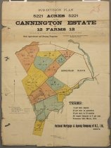Image of Sub-division plan Cannington Estate : for private sale on account of the executors of the late J M Ritchie -