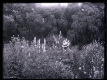 Image of [Unidentified man in flower garden] - Clayton Station Collection