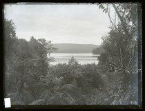 Image of [Lake Mapourika, West Coast] - Adamson Collection