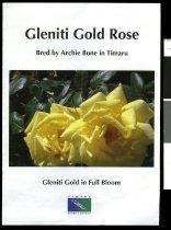 Image of Glentiti Gold Rose : bred by Archie Bone in Timaru -