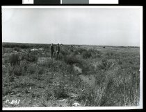 Image of [Seadown drainage, 1950-51] -