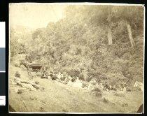 Image of [Picnicking at Gordons Valley, Pareora] -