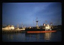 Image of ['Nimbus' and 'Toguwa Maru'] -