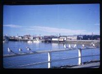 Image of Timaru Harbour -