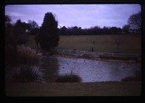 Image of [Timaru Botanical Gardens] -