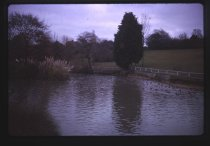 Image of [Timaru Botanical Gardens] -