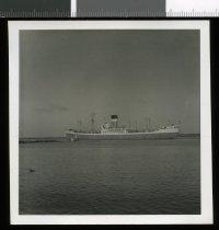 Image of [Ellerman Line Vessel] -