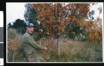 Image of Pleasant Point Beekeeper Fred Bartrum - Timaru Herald Photographs, Personalities Collection