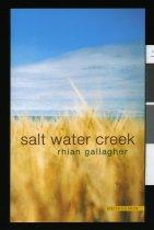 Image of Salt water creek - Gallagher, Rhian