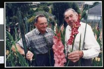 Image of Ted Falvey - Timaru Herald Photographs, Personalities Collection