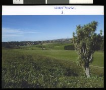 Image of ['Inwardleigh', Cave] -