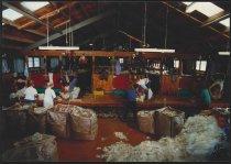 Image of [Shearing shed] -