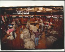 Image of [Shearing shed] -