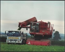 Image of [McCains pea harvester] -