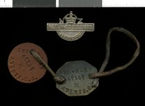Digital images of the First World War dog tags of ...