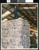Image of Eric Morrison, South Canterbury Recycling - Timaru Herald Photographs, Personalities Collection