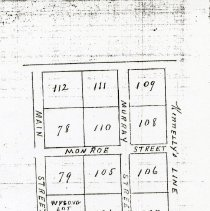 Image of 1824 Map of Fincastle Lots - 2009.1.260