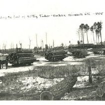 "Image of Loading the Last of the Big Timber - ""Loading the last of the Big Timber."" Loading logs near Nisswa, 1905"