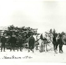 Image of Hauling cedar poles for Oscar Thorstenson - Hauling cedar poles for Oscar Thorstenson, logging 1912. Horse team with loggers
