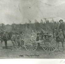 Image of Charles Lundeen with horse and buggy - Charles Lundeen with horse and buggy, four other unidentified people, early transportation, 1904.