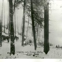 Image of Logging, Lake George - Akeley area