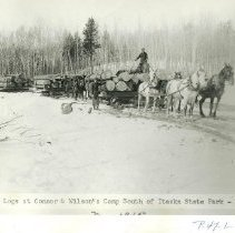 Image of Hauling logs at Connor & Wilson Camp - Hauling logs at Connor & Wilson Camp south of Itasca State Park, 1915