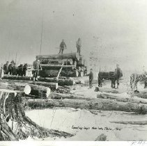 Image of Loading Logs Near Lake Itasca - Loggers and horses, loading logs near Lake Itasca, 1906
