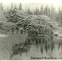Image of Cormorant River Log Drive - Loggers and logs on Cormorant River log drive, 1903
