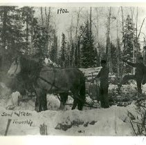 Image of Henry Sand logging in Inez Township - Henry Sand and team, logging in Inez township, 1902