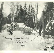 Image of Henry Sand logging in Inez Township - Henry Sand, logging Inez Township, 1902