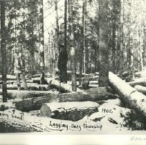 Image of Henry Sand Logging in Inez Township