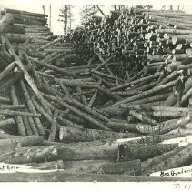 Image of George Gunderson's Logs Near Cormorant River - George Gunderson's logs near Cormorant River, 1905 Large stacks of logs