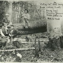 Image of Cutting Out a Road in Cormant Township - Cutting out road going north from Sidney Sand's, Cormant township, 1908. Henry Sand, Mrs. H. Sand, Clarence Johnson, Swen Johnson taking a break after cutting down a tree