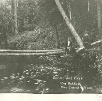 Image of William Holden and Mrs. Cunningham Sitting on Trees Over Cormorant River